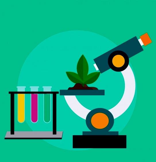 Основы базовых биологических дисциплин: приемы систематизации и обобщения
